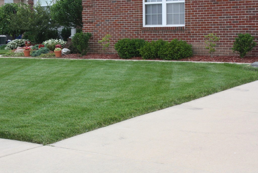 lawn-fertilizing-services-macomb-county-1