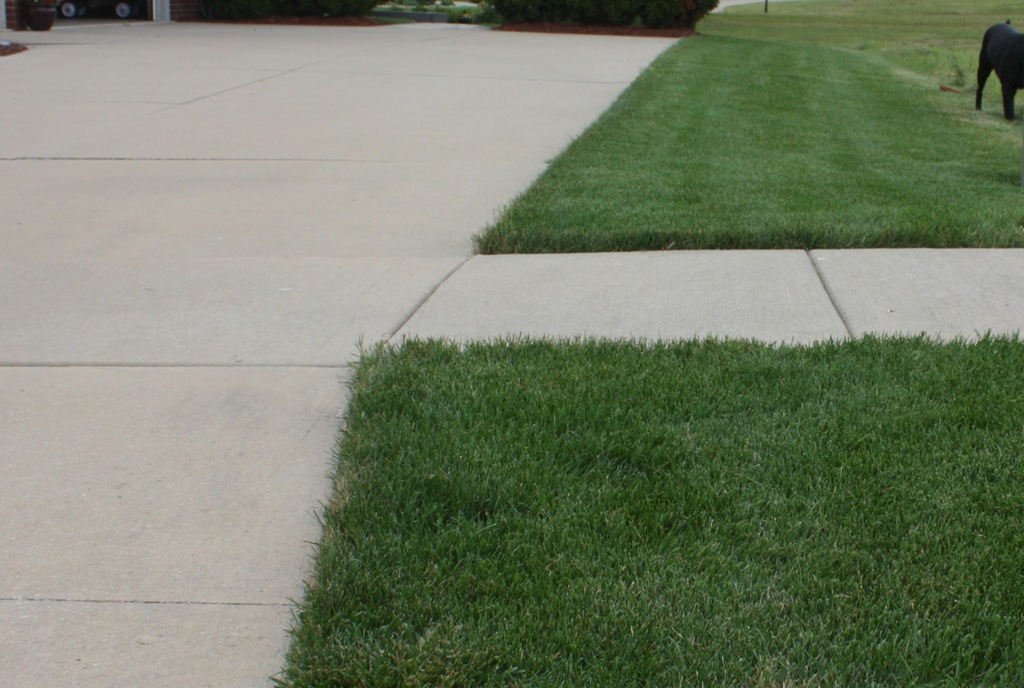 lawn-fertilizing-services-macomb-county-2