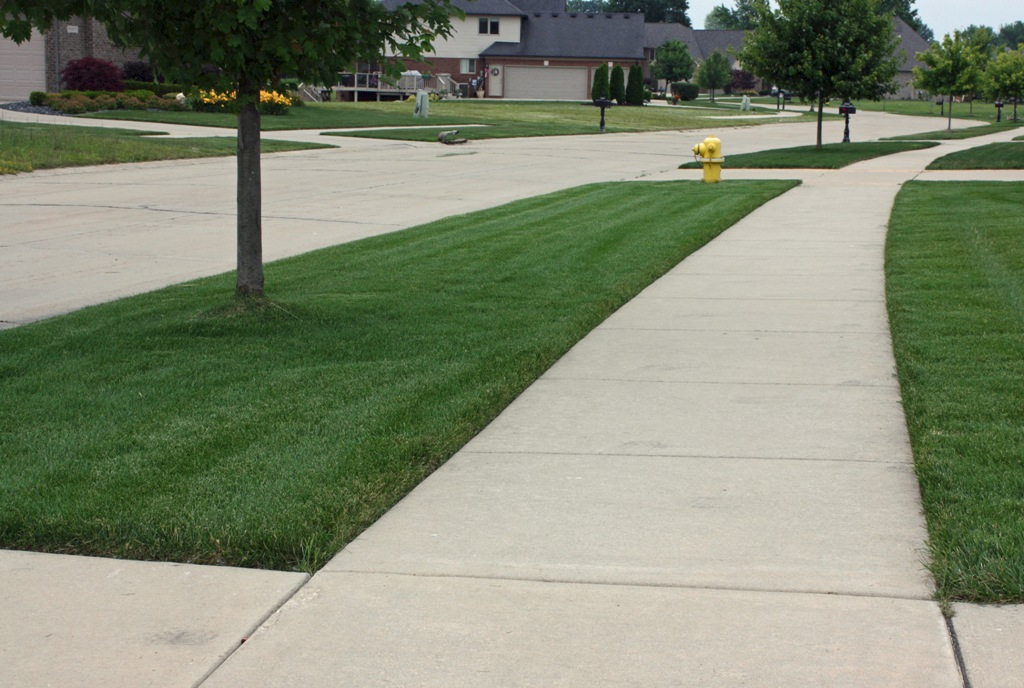 lawn-fertilizing-services-macomb-county-3